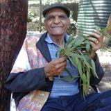 Uncle Herb Patten