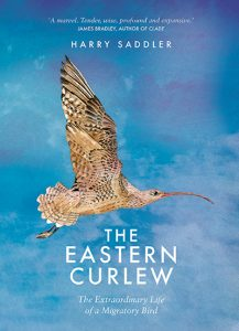 Image of the Eastern Curlew book by Harry Sadler